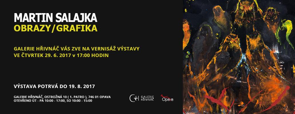29.6.2017 Martin Salajka